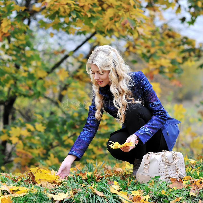 Beautiful elegant woman collects leaves in a park in autumn.  stock images