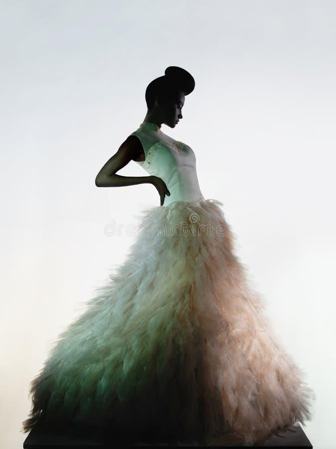 Beautiful elegant woman in luxury evening dress royalty free stock photo