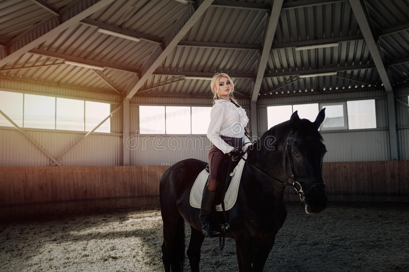 Beautiful elegant young blonde girl sits on a her black horse dressing uniform competition white blouse shirt and brown pants. royalty free stock photos