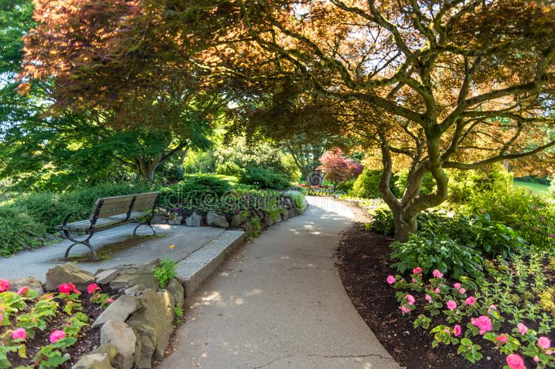 The beautiful Elizabeth park in Vancouver. Canada stock photography