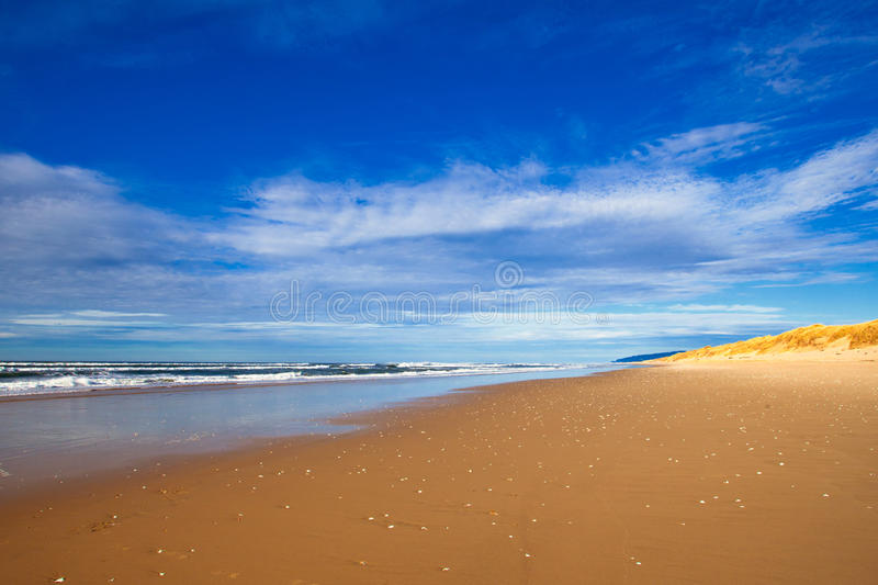 Download Beautiful Empty Beach stock image. Image of scenic, travel - 17324693