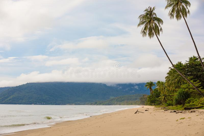 Beautiful empty morning Samui beach with palm trees. Beautiful tropical empty morning Samui beach with palm trees stock photos