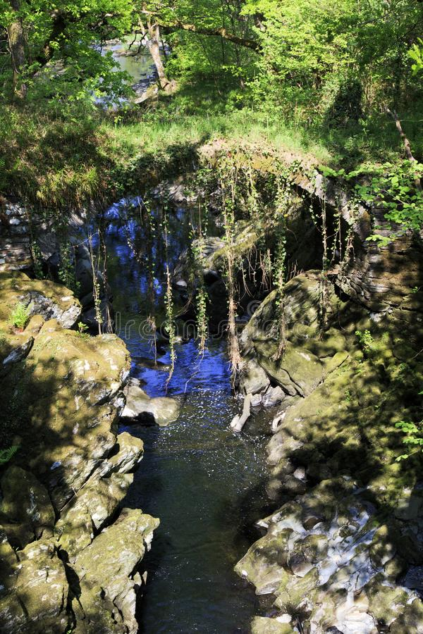 Over grown Faerie bridges spanning a deep gorge to a river. Beautiful and enchanting, over grown with trees, trailing ivy and creepers, the Faerie bridges stock images