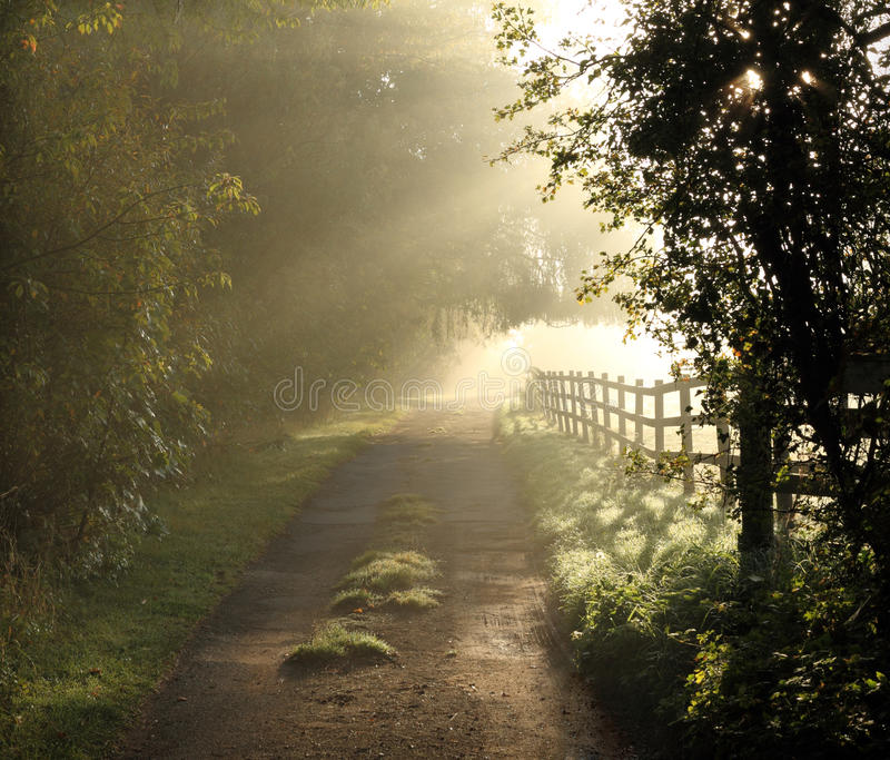 Beautiful English Country Lane stock photos