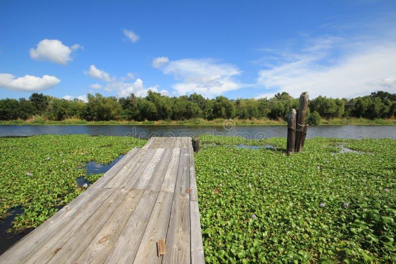 Bayou Lafourche, Louisiana royalty free stock photos