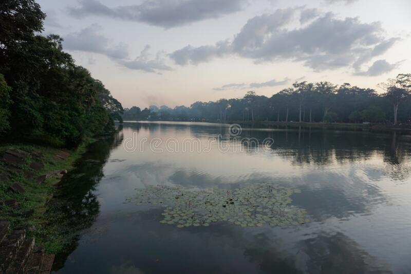 Beautiful evening on the river with water lilies close to Angkor, where the trees and Clouds reflecting in the water. Reflection of the Environment stock photos