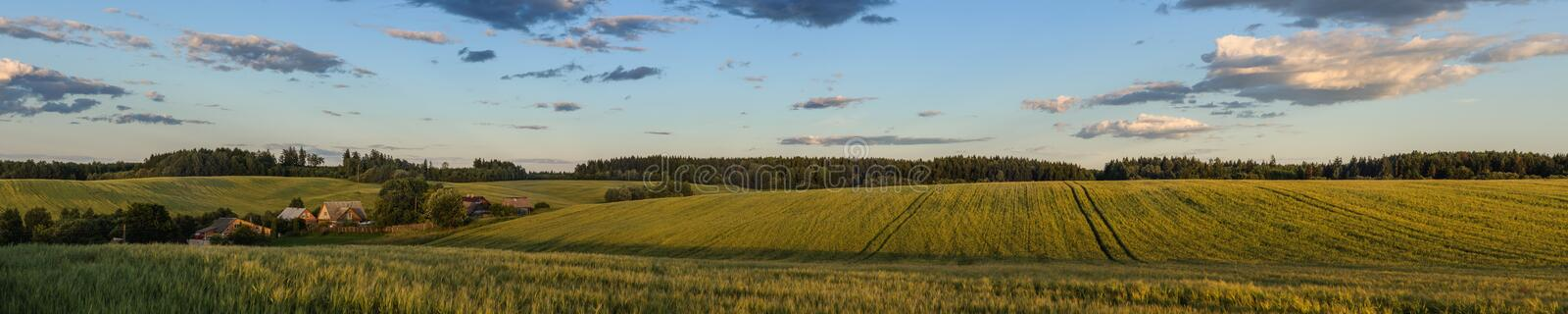 Beautiful evening summer rural landscape. scenic panoramic view of a wide hilly agricultural field in the warm light of sunset. With a small village on the left royalty free stock photo