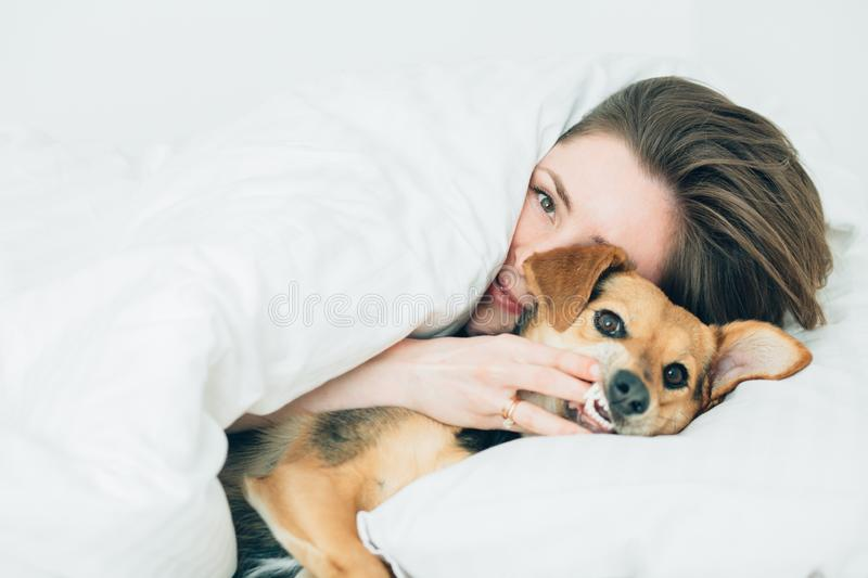 Beautiful excited young woman and her cute cur dog are fool around, looking at camera while lying covered with a blanket in bed. stock image
