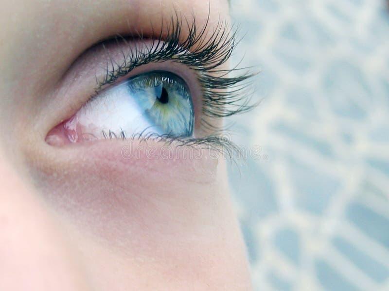Beautiful eye royalty free stock photos