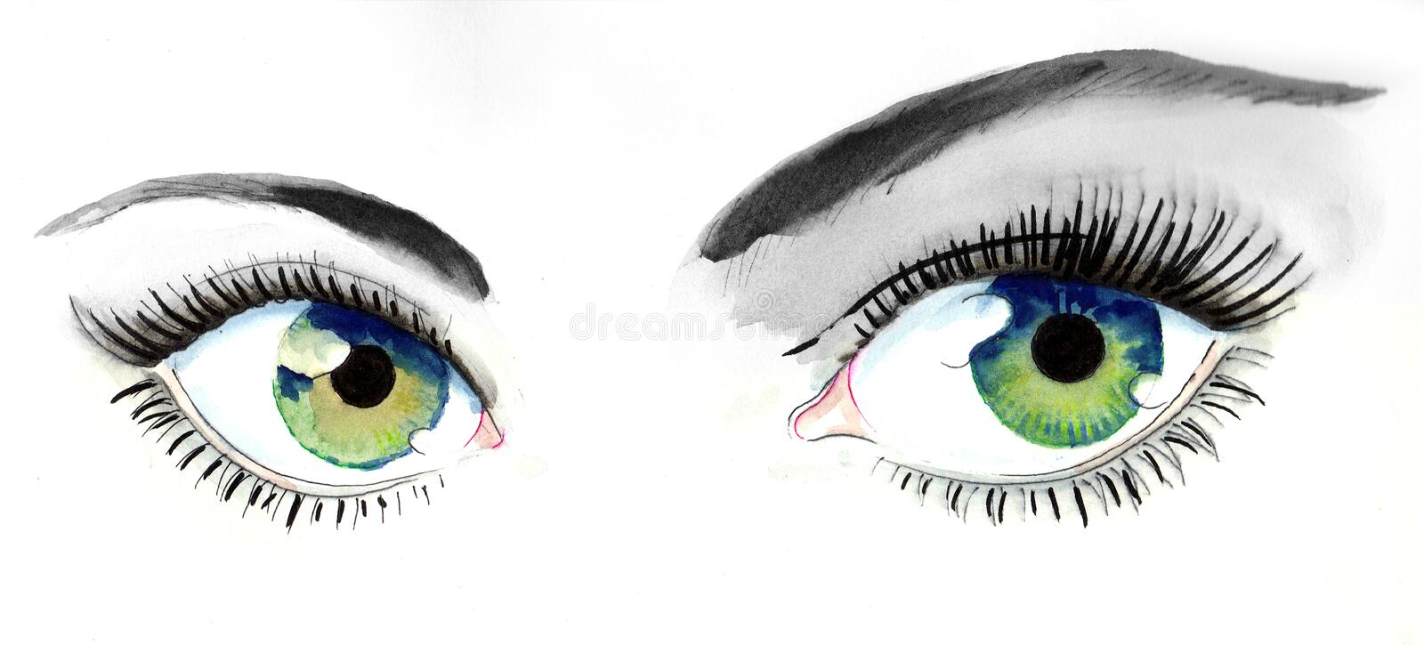 Beautiful eyes vector illustration