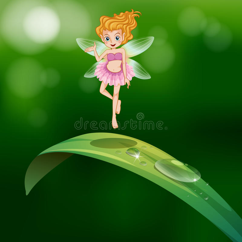 Download A Beautiful Fairy Above An Elongated Green Leaf Stock Vector - Image: 33072517