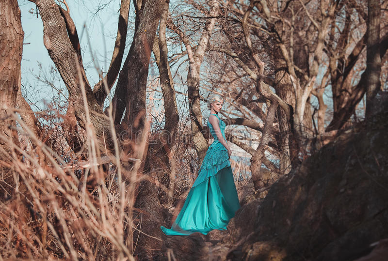 Beautiful fairy in a long turquoise dress stock images