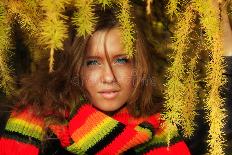 Beautiful fall. Young pretty woman in the autumn park stock image
