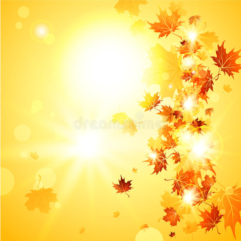 Beautiful fall background with falling leaves. With place for text vector illustration