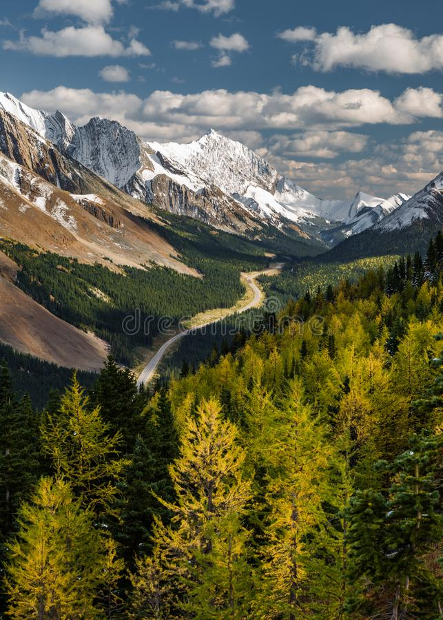 Fall colours in the mountains royalty free stock photography