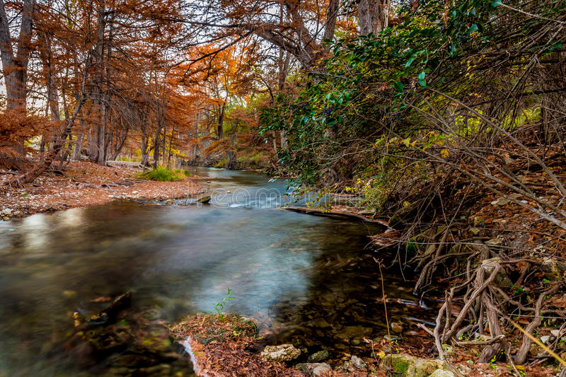 Beautiful Fall Foliage on the Guadalupe River, Texas. Beautiful Fall Foliage on the Cypress Trees Surrounding the Swift Flowing Blue Waters of the Guadalupe stock photo