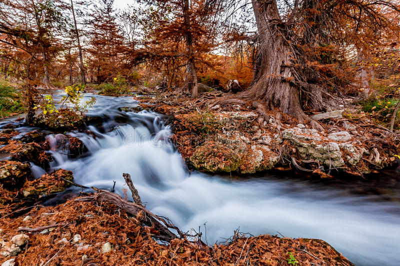 Beautiful Fall Foliage on the Guadalupe River, Texas. Beautiful Orange Fall Foliage Surrounding the Swift Flowing Waterfalls of the Guadalupe River, Texas stock image