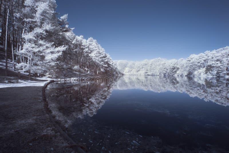 Beautiful false color surreal infrared landscape image of lake a stock photos