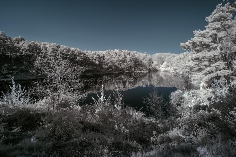 Beautiful false color surreal infrared landscape image of lake a royalty free stock photo