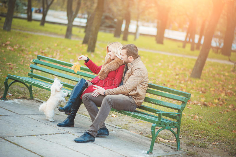 Beautiful family couple with white cute Maltese dog spending time in autumn park. stock photo