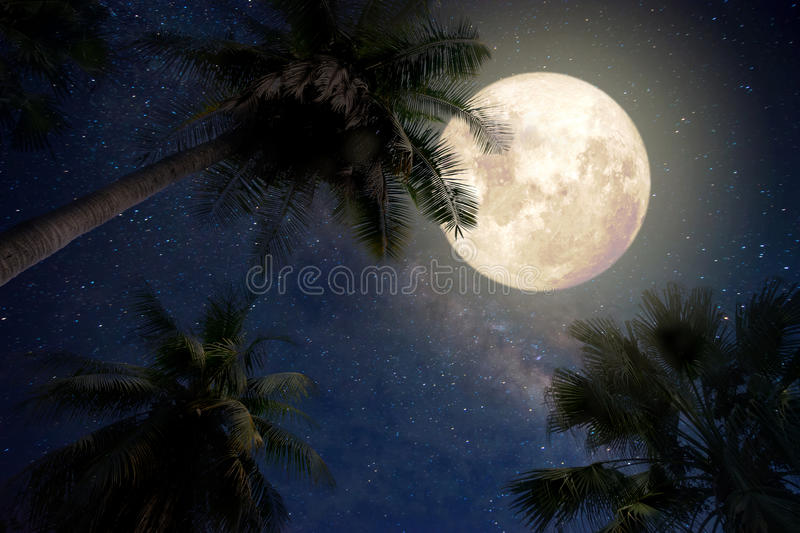 Beautiful fantasy of palm tree at tropical beach and full moon with milky way star in night skies background. Retro style artwork with vintage color tone royalty free stock photo