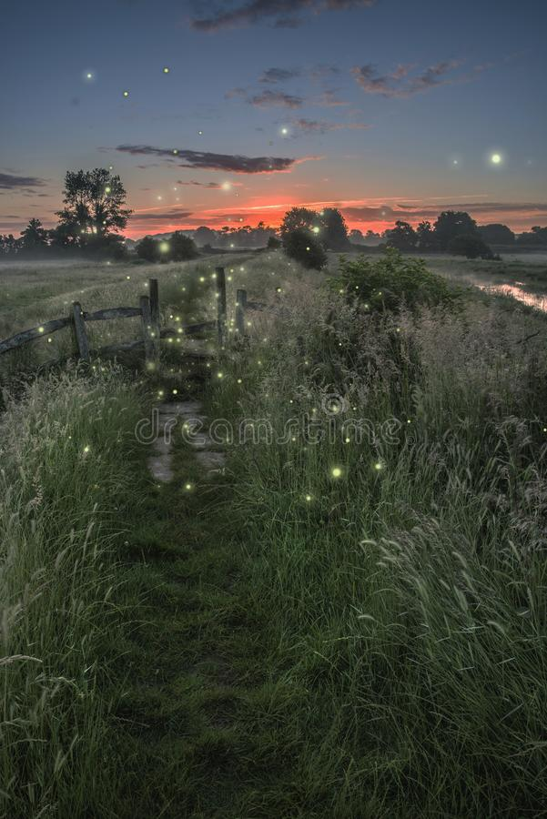 Beautiful fantasy picture of fireflies at dusk over river landscape scene stock photo