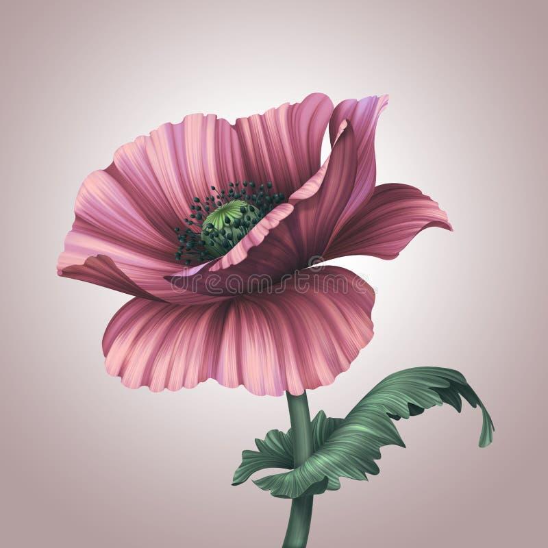 Beautiful fantasy pink poppy flower royalty free illustration
