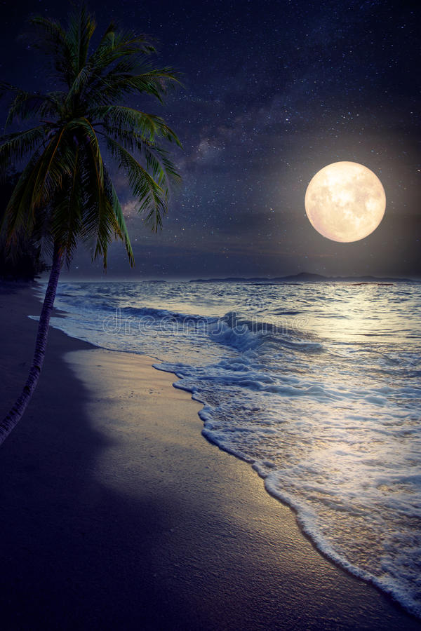 Beautiful fantasy tropical beach with Milky Way star in night skies stock photography