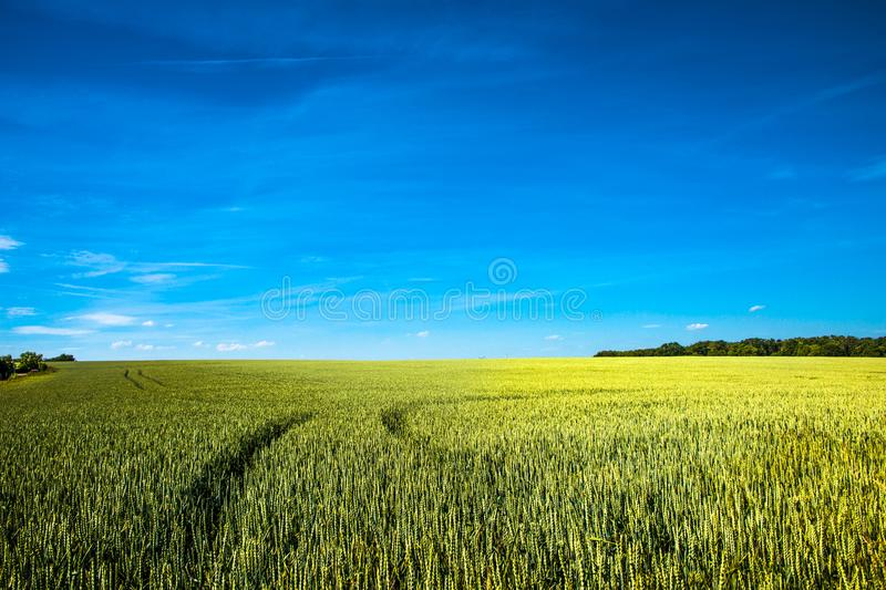 Beautiful farm landscape in late Spring in Europe stock photography