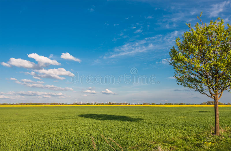 Beautiful farm landscape in late spring in Germany. May 2015 stock photo
