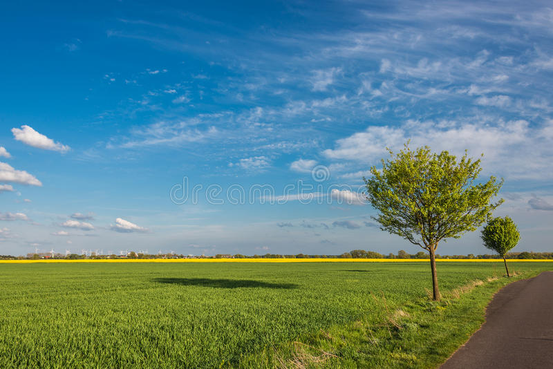 Beautiful farm landscape in late spring in Germany. May 2015 royalty free stock images
