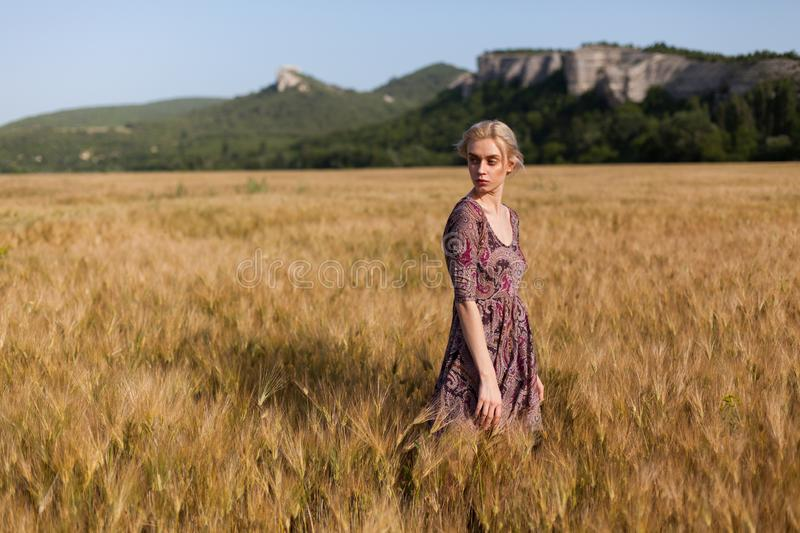 Beautiful fashionable blonde woman in a field of wheat royalty free stock image