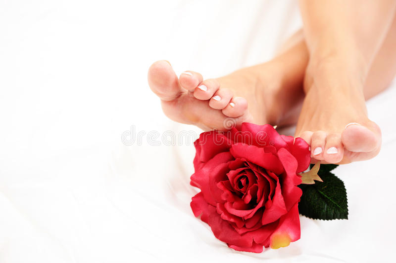 Download Beautiful feet stock image. Image of legs, pedicure, rose - 10082417