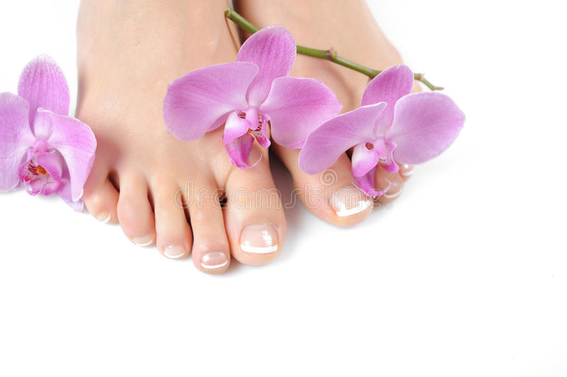 Beautiful feet with perfect french spa pedicure royalty free stock photo