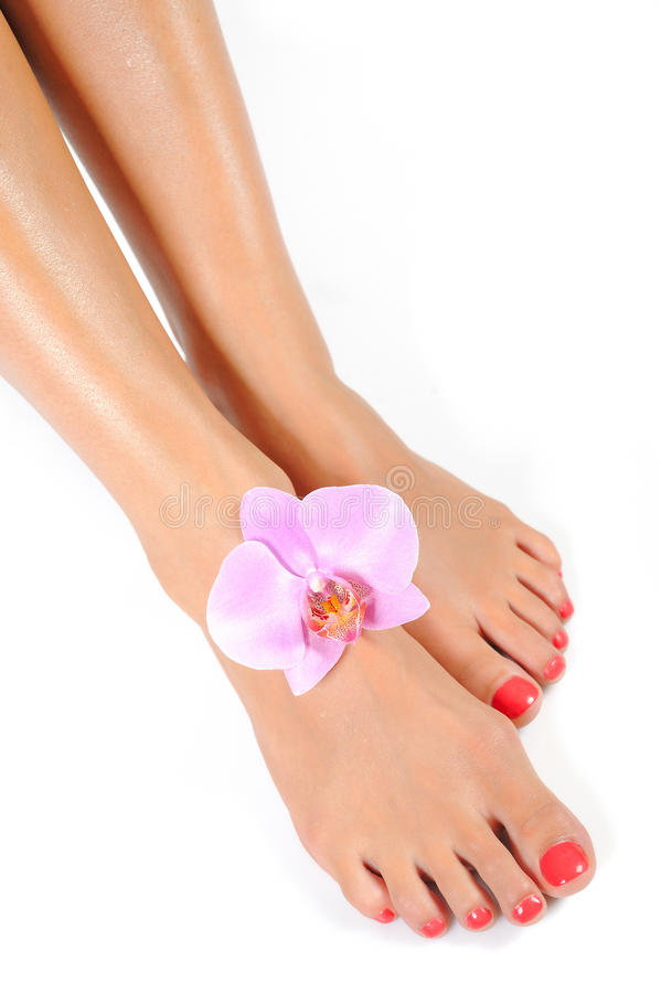 Beautiful feet with perfect spa pedicure stock photos