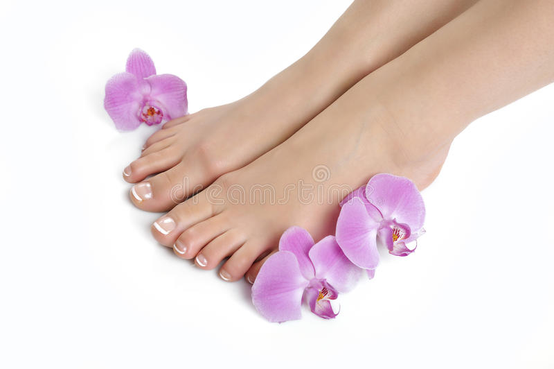 Beautiful feet with spa french nail pedicure royalty free stock photo