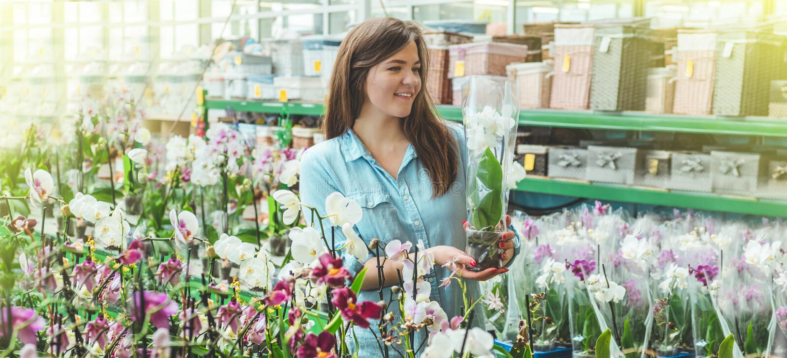 Beautiful female customer smelling colorful blooming orchids in the retail store. Gardening In Greenhouse. Botanical garden, flower farming, horticultural stock photography