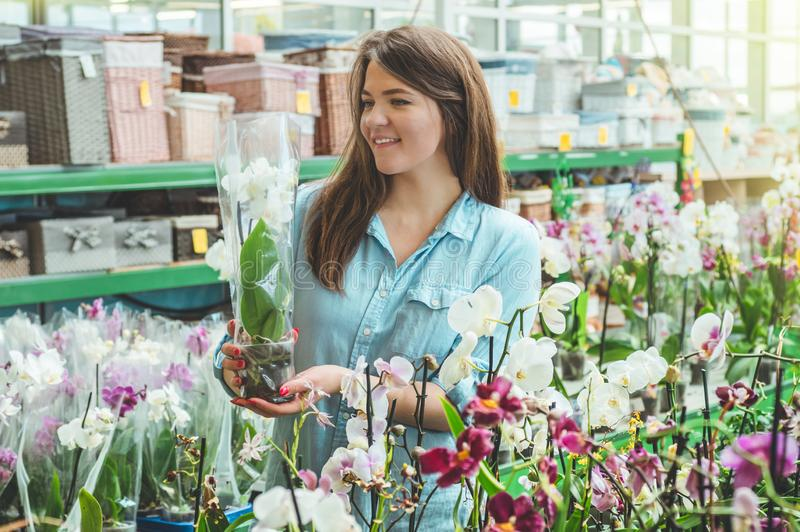 Beautiful female customer smelling colorful blooming orchids in the retail store. Gardening In Greenhouse. Botanical garden, flower farming, horticultural royalty free stock photos
