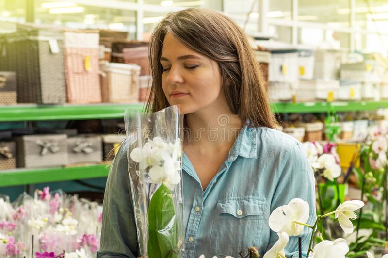 Beautiful female customer smelling colorful blooming orchids in the retail store. Gardening In Greenhouse. Botanical garden, flower farming, horticultural royalty free stock photography
