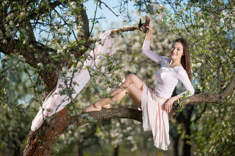 Beautiful female cyclist with retro bicycle in the spring garden. Close-up of smiling young female in light dress sitting on a branch of a blossoming tree near stock photos