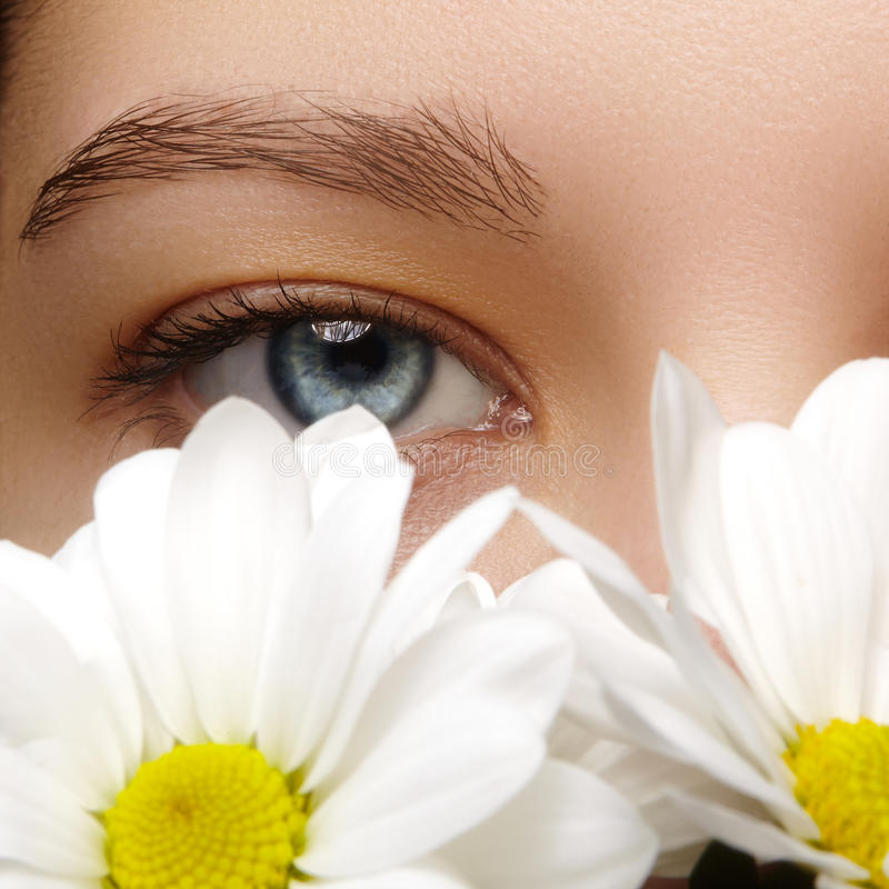 Beautiful female eye. Clean skin, fashion natural make-up. Good vision. Spring natural look with chamomile flowers stock images