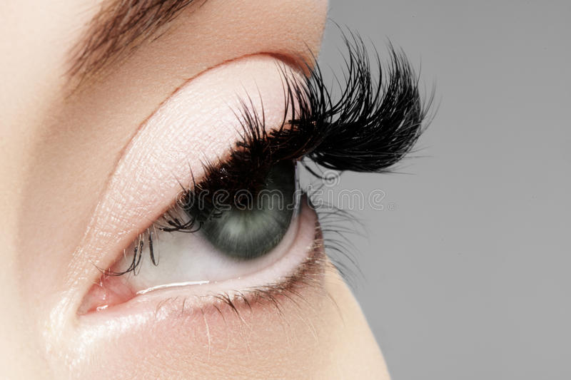 Beautiful female eye with extreme long eyelashes, black liner makeup. Perfect make-up, long lashes. Closeup fashion eyes. Beautiful macro shot of female eye with royalty free stock photography