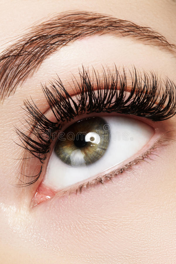 Beautiful female eye with extreme long eyelashes, black liner makeup. Perfect make-up, long lashes. Closeup fashion eyes. Beautiful macro shot of female eye with royalty free stock photo