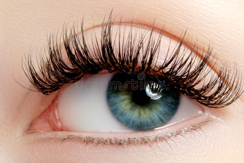 Beautiful female eye with extreme long eyelashes, black liner makeup. Perfect make-up, long lashes. Closeup fashion eyes. Beautiful macro shot of female eye with royalty free stock images