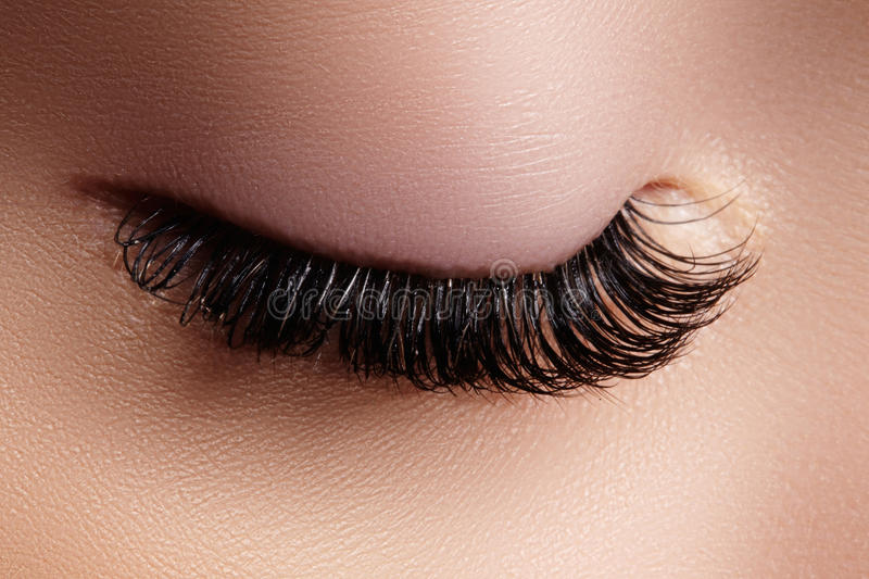 Beautiful female eye with extreme long eyelashes, natural look. Make-up, long lashes. Closeup fashion eyes. Lash gesign. Beautiful macro shot of female eye with royalty free stock photo