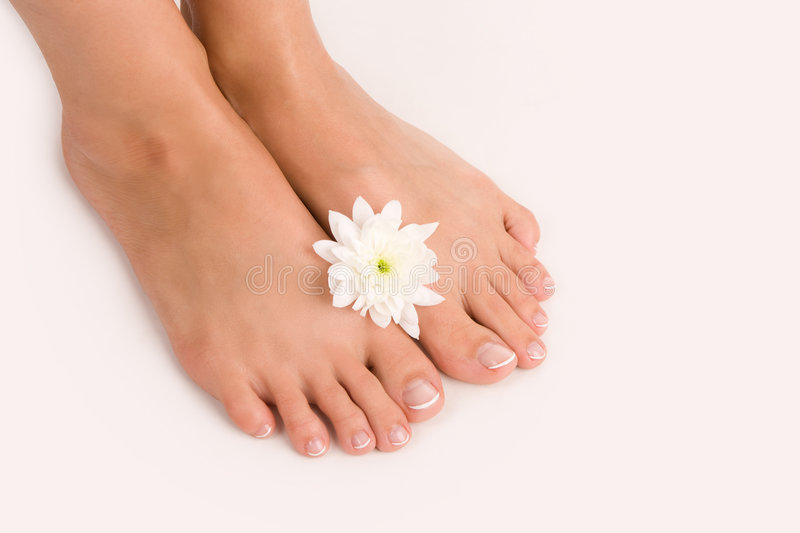 Download Beautiful female feet stock image. Image of person, toenail - 8199373