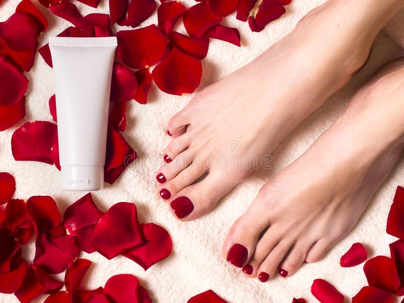 Beautiful female feet on terry towel with rose petals. Tube of skin care cream. Spa and skin care concept stock image