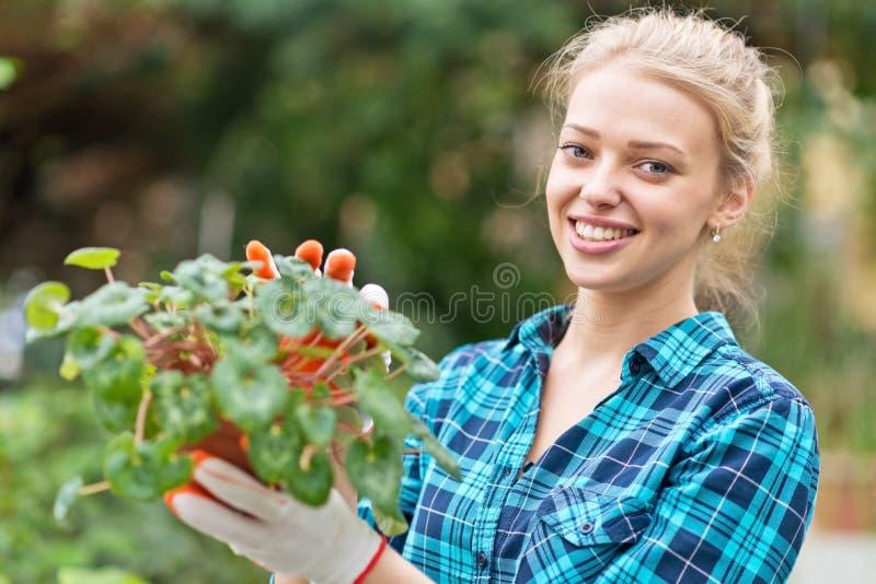 Beautiful female florist stock photos