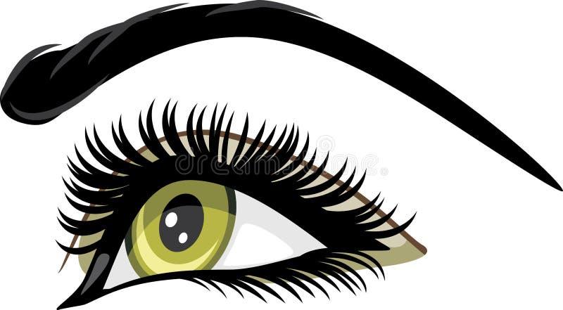Beautiful female green eye royalty free stock images