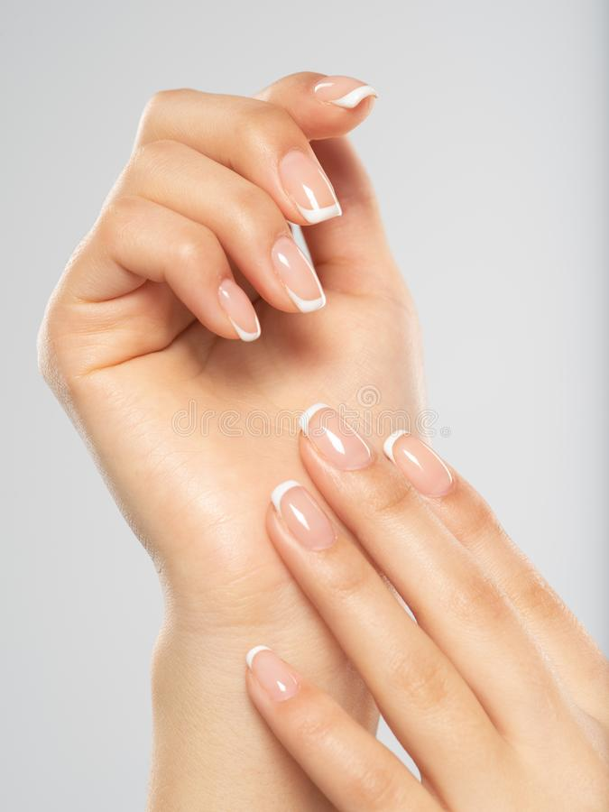 Beautiful female hands. Woman hands with beautiful french manicure, nails royalty free stock photo